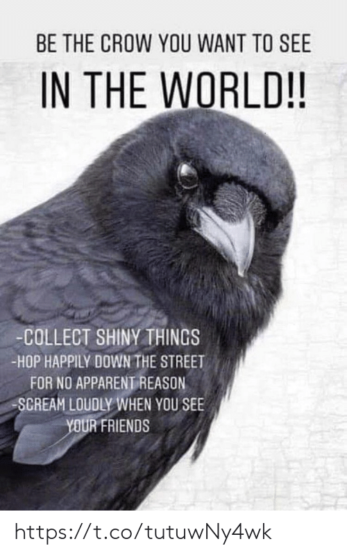 Friends, Memes, and Scream: BE THE CROW YOU WANT TO SEE  IN THE WORLD!!  -COLLECT SHINYTHINGS  -HOP HAPPILY DOWN THE STREET  FOR NO APPARENT REASON  SCREAM LOUDLY WHEN YOU SEE  YOUR FRIENDS https://t.co/tutuwNy4wk