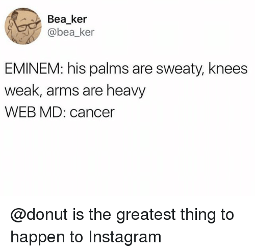 Palms Are Sweaty Knees Weak: Bea ker  @bea_ker  EMINEM: his palms are sweaty, knees  weak, arms are heavy  WEB MD: cancer @donut is the greatest thing to happen to Instagram