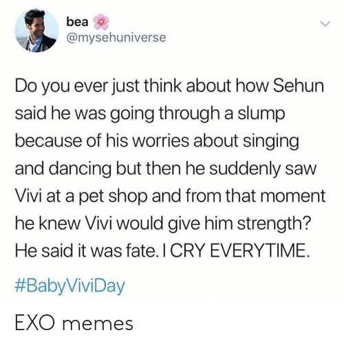 Dancing, Memes, and Saw: bea  @mysehuniverse  Do you ever just think about how Sehun  said he was going through a slump  because of his worries about singing  and dancing but then he suddenly saw  Vivi at a pet shop and from that moment  he knew Vivi would give him strength?  He said it was fate. I CRY EVERYTIME.  EXO memes