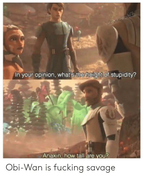 Fucking, Savage, and Stupidity: beakenaE  In your opinion, whar's the height of stupidity?  Anakin, how tall are you? Obi-Wan is fucking savage