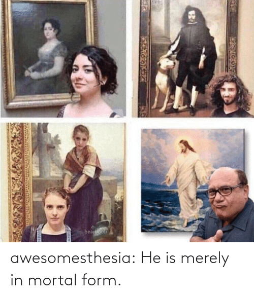 merely: beaoob awesomesthesia:  He is merely in mortal form.