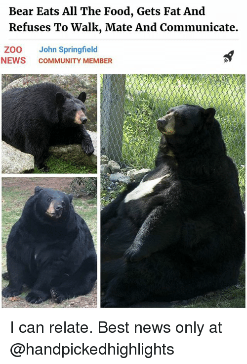 bearings: Bear Eats All The Food, Gets Fat And  Refuses To Walk, Mate And Communicate.  ZOO John Springfield  NEWS COMMUNITY MEMBER I can relate. Best news only at @handpickedhighlights