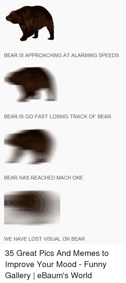 ebaums: BEAR  IS APPROACHING AT  ALARMING SPEEDS  BEAR IS GO FAST LOSING TRACK OF BEAR  BEAR HAS REACHED MACH ONE  WE HAVE LOST VISUAL ON BEAR 35 Great Pics And Memes to Improve Your Mood - Funny Gallery | eBaum's World
