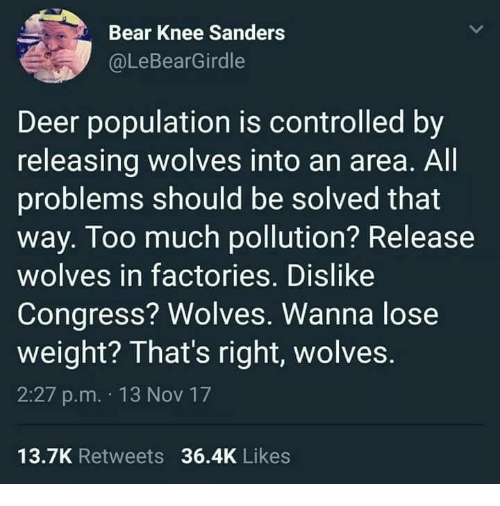 Deer, Funny, and Too Much: Bear Knee Sanders  @LeBearGirdle  Deer population is controlled by  releasing wolves into an area. All  problems should be solved that  way. Too much pollution? Release  wolves in factories. Dislike  Congress? Wolves. Wanna lose  weight? That's right, wolves.  2:27 p.m. 13 Nov 17  13.7K Retweets 36.4K Likes