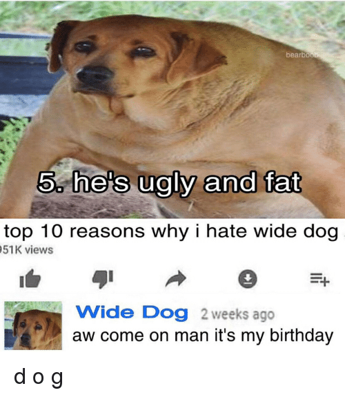 Bearbo 5 Hes Ugly And Fat Top 10 Reasons Why I Hate Wide Dog 51k