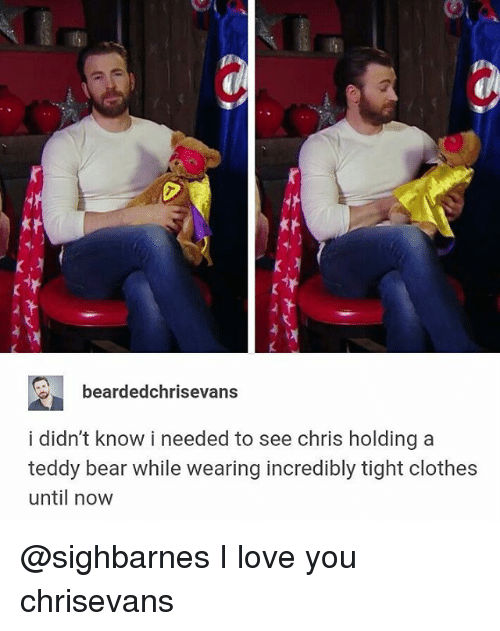 Clothes, Love, and Memes: bearded chrisevans  i didn't know i needed to see chris holding a  teddy bear while wearing incredibly tight clothes  until now @sighbarnes I love you chrisevans