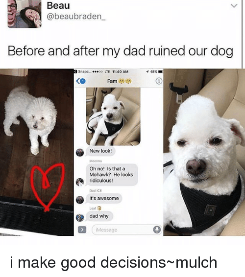 Awesome Dad: Beau  beaubraden  Before and after my dad ruined our dog  Snapc  ...oo LTE 11:40 AM  Fam  New look!  Oh no! Is that a  Mohawk? He looks  ridiculous!  Dad ICE  It's awesome  dad why  Message i make good decisions~mulch