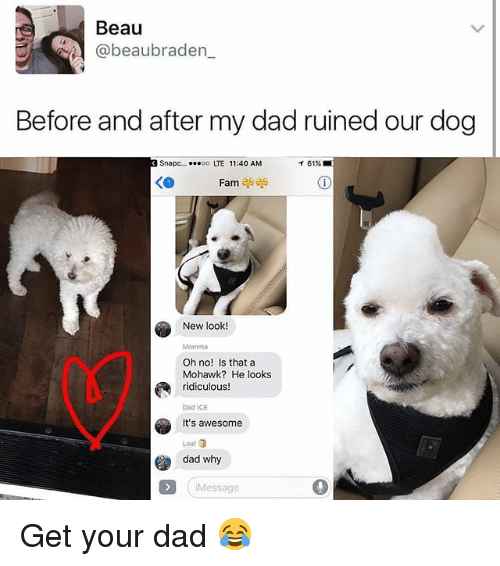 Awesome Dad: Beau  beaubraden  Before and after my dad ruined our dog  snapc.... ...oo TE 11:40 AM  T 61%  Fam  New look  Oh no! Is that a  Mohawk? He looks  ridiculous!  Dad ICE  It's awesome  dad why  i Message Get your dad 😂