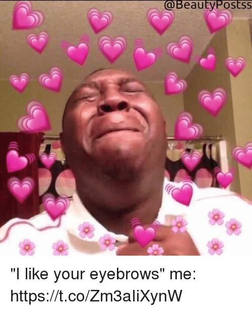 """Girl Memes, Eyebrows, and Like: @BeautyPostsS """"I like your eyebrows""""  me: https://t.co/Zm3aIiXynW"""