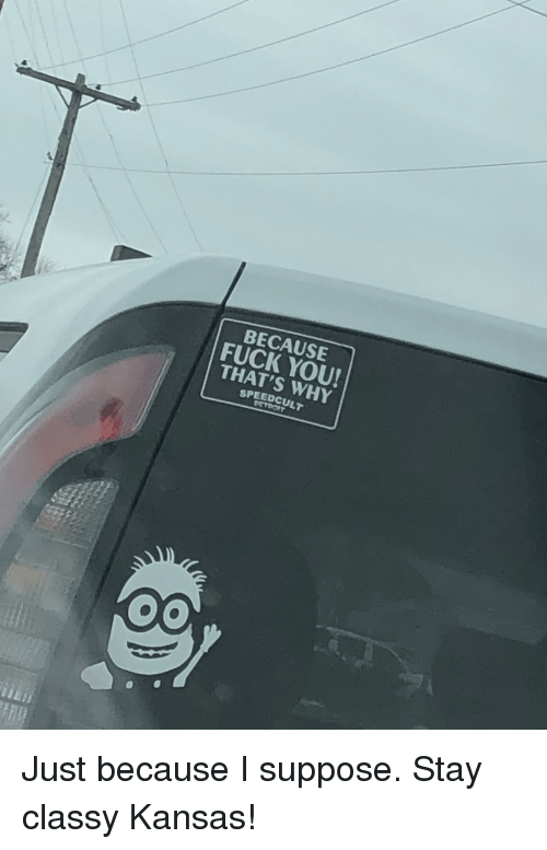 Because Fuck You Thats Why: BECAUSE  FUCK YOU!  THAT'S WHY  SPEEDCULT