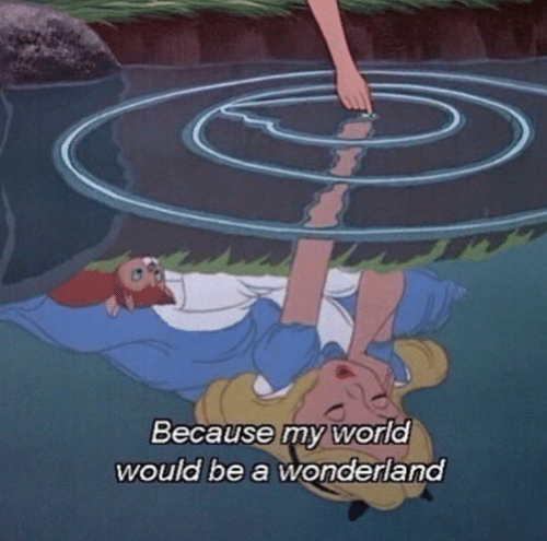 my world: Because my world  would be a wonderland