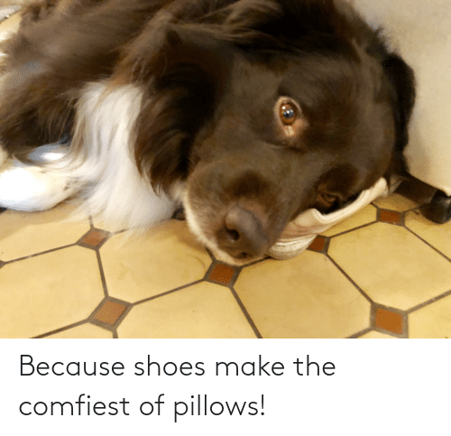pillows: Because shoes make the comfiest of pillows!