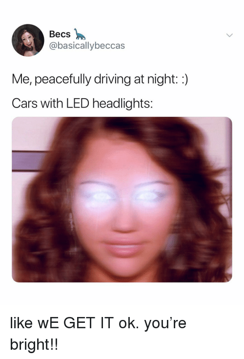 We Get It: Becs  @basicallybeccas  Me, peacefully driving at night::)  Cars with LED headlights: like wE GET IT ok. you're bright!!