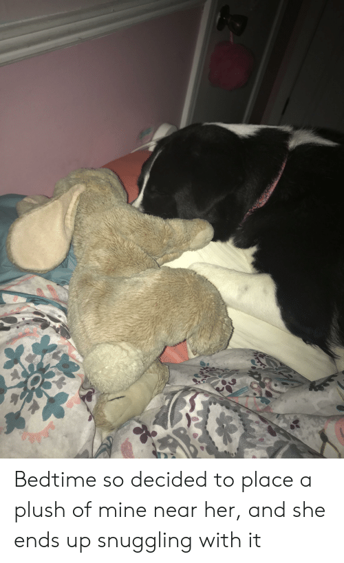 Her, Mine, and She: Bedtime so decided to place a plush of mine near her, and she ends up snuggling with it