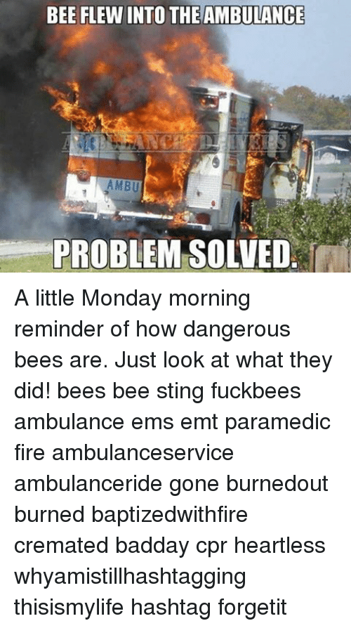 Emt: BEE FLEWINTO THEAMBULANCE  AMBU  PROBLEM SOLVED A little Monday morning reminder of how dangerous bees are. Just look at what they did! bees bee sting fuckbees ambulance ems emt paramedic fire ambulanceservice ambulanceride gone burnedout burned baptizedwithfire cremated badday cpr heartless whyamistillhashtagging thisismylife hashtag forgetit