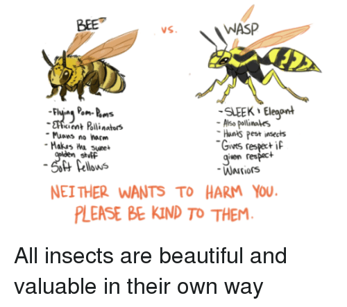 wasp: BEE  WASP  SLEEK Eleaont  cient Polli nators  Also pollinales  Hants Pest insects  Gives respeci  given respact  Muons no harm  stutF  Pellows  NEI THER WANTS TO HARM YOU  LEASE BE KIND TO THEM All insects are beautiful and valuable in their own way