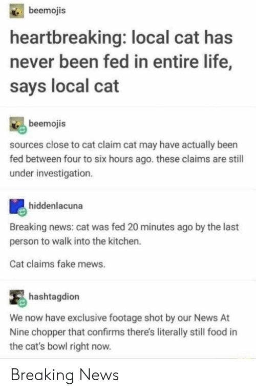 Cats, Fake, and Food: beemojis  heartbreaking: local cat has  never been fed in entire life,  says local cat  beemojis  sources close to cat claim cat may have actually been  fed between four to six hours ago. these claims are still  under investigation.  hiddenlacuna  Breaking news: cat was fed 20 minutes ago by the last  person to walk into the kitchen.  Cat claims fake mews.  hashtagdion  We now have exclusive footage shot by our News  Nine chopper that confirms there's literally still food  the cat's bowl right now. Breaking News