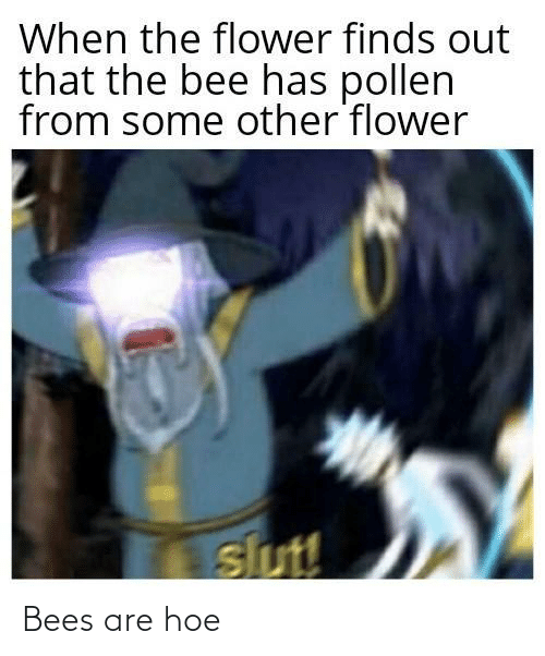 hoe: Bees are hoe