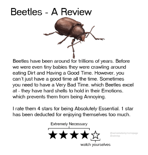 tiny babies: Beetles - A Review  Beetles have been around for trillions of years. Before  we were even tiny babies they were crawling around  eating Dirt and Having a Good Time. However, you  can't just have a good time all the time. Sometimes  you need to have a Very Bad Time, which Beetles excel  at - they have hard shells to hold in their Emotions,  which prevents them from being Annoying  I rate them 4 stars for being Absolutely Essential. 1 star  has been deducted for enjoying themselves too much  Extremely Necessary  @welcometomymemepage  @wtmmp  watch yourselves