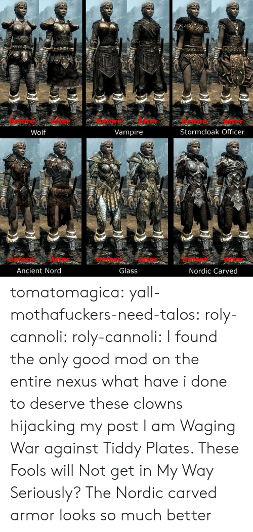 Nexus: Before After  Before After  Before After  Stormcloak Officer  Wolf  Vampire   Before After  Glass  Before After  Before After  Ancient Nord  Nordic Carved tomatomagica:  yall-mothafuckers-need-talos:  roly-cannoli:   roly-cannoli:    I found the only good mod on the entire nexus  what have i done to deserve these clowns hijacking my post I am Waging War against Tiddy Plates. These Fools will Not get in My Way    Seriously? The Nordic carved armor looks so much better