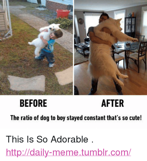 """The Ratio: BEFORE  AFTER  The ratio of dog to boy stayed constant that's so cute! <p>This Is So Adorable .<br/><a href=""""http://daily-meme.tumblr.com""""><span style=""""color: #0000cd;""""><a href=""""http://daily-meme.tumblr.com/"""">http://daily-meme.tumblr.com/</a></span></a></p>"""