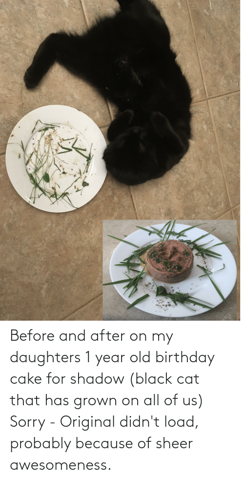 Daughters: Before and after on my daughters 1 year old birthday cake for shadow (black cat that has grown on all of us) Sorry - Original didn't load, probably because of sheer awesomeness.