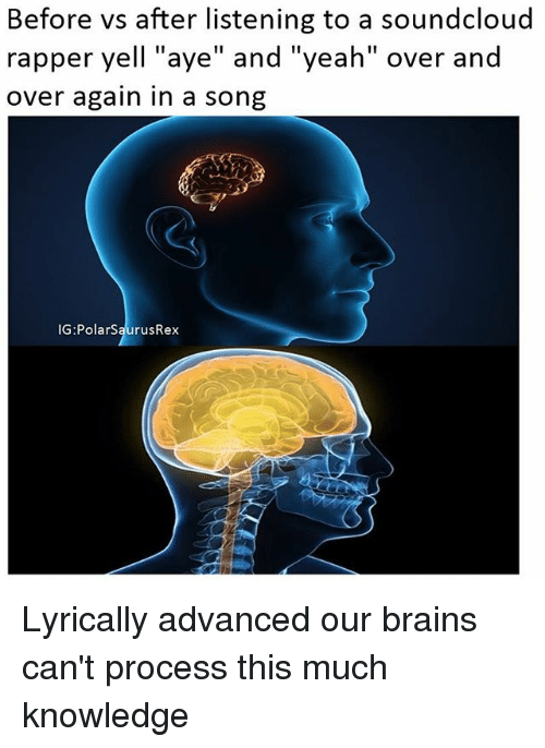 """Soundclouder: Before vs after listening to a soundcloud  rapper yell """"aye"""" and """"yeah"""" over and  over again in a song  IG:PolarSaurusRex Lyrically advanced our brains can't process this much knowledge"""