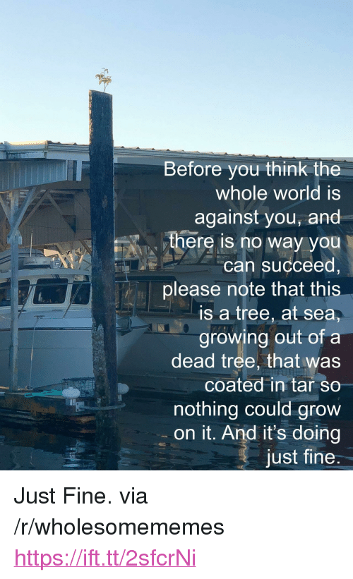 """Dead Tree: Before you think the  whole world is  against you, and  there iS no way you  can succeed,  please note that this  is a tree, at sea,  growing out of a  dead tree, that was  coated in tar so  nothing could grow  on it. And it's doing  just fine  ARMIN <p>Just Fine. via /r/wholesomememes <a href=""""https://ift.tt/2sfcrNi"""">https://ift.tt/2sfcrNi</a></p>"""