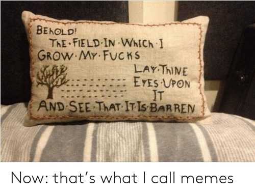 Upon: BEHOLD!  ThE FIELD IN WhICh I  GROW MY FUCKS  LAY ThINE  EYES UPON  IT  SEE THAT IT IS BARREN  AND Now: that's what I call memes