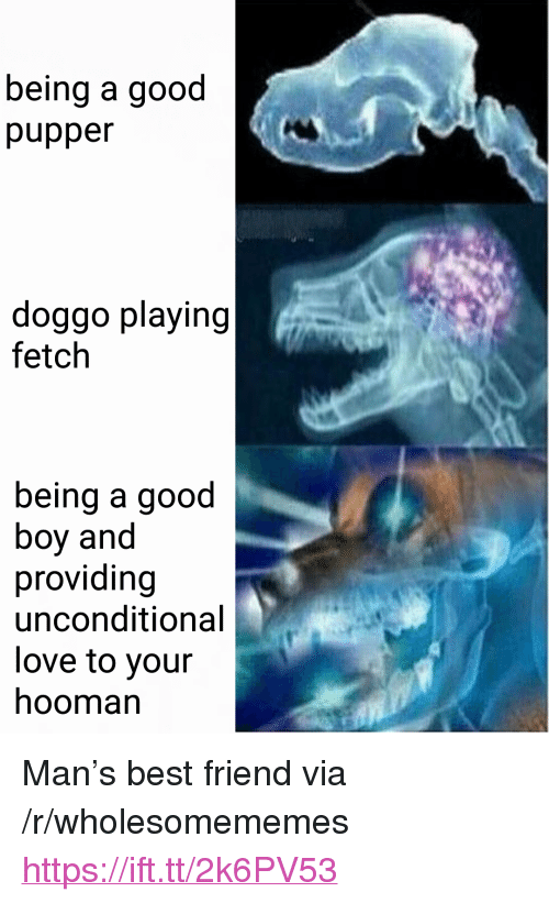 "Best Friend, Love, and Best: being a good  pupper  doggo playing  fetch  being a good  boy and  providing  unconditional  love to your  hooman <p>Man's best friend via /r/wholesomememes <a href=""https://ift.tt/2k6PV53"">https://ift.tt/2k6PV53</a></p>"