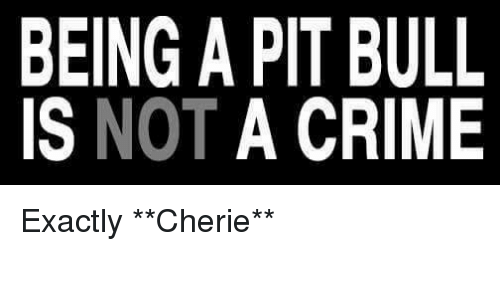 Criming: BEING A PIT BULL  IS NOT A CRIME Exactly   **Cherie**