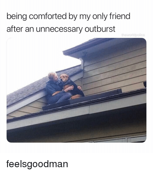 Memes, 🤖, and Friend: being comforted by my only friend  after an unnecessary outburst feelsgoodman