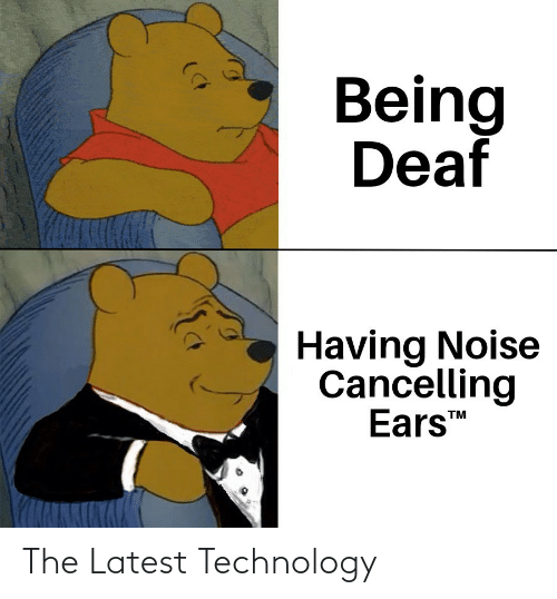 ears: Being  Deaf  Having Noise  Cancelling  Ears  TM The Latest Technology