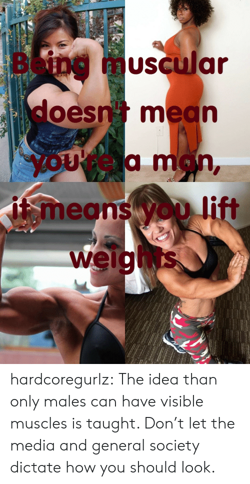 Tumblr, Blog, and Mean: Being  muscular  doesn mean  yOUrea man,  means yOD lift  weights hardcoregurlz:  The idea than only males can have visible muscles is taught. Don't let the media and general society dictate how you should look.
