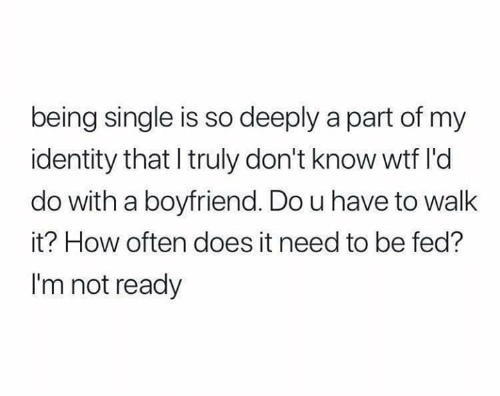 Being Single: being single is so deeply a part of my  identity that I truly don't know wtf l'd  do with a boyfriend. Do u have to walk  it? How often does it need to be fed?  I'm not ready