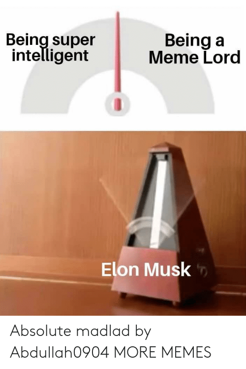 Dank, Meme, and Memes: Being super  intelligent  Being a  Meme Lord  Elon Musk Absolute madlad by Abdullah0904 MORE MEMES