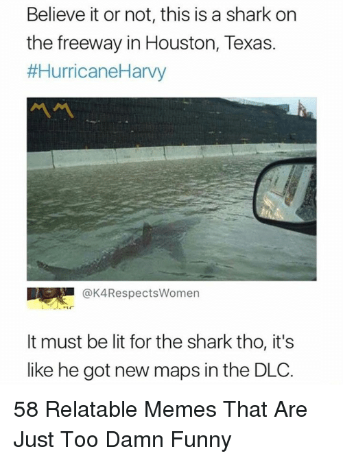 Funny, Lit, and Memes: Believe it or not, this is a shark on  the freeway in Houston, Texas.  #HurricaneHarvy  @K4RespectsWomen  It must be lit for the shark tho, it's  like he got new maps in the DLC. 58 Relatable Memes That Are Just Too Damn Funny