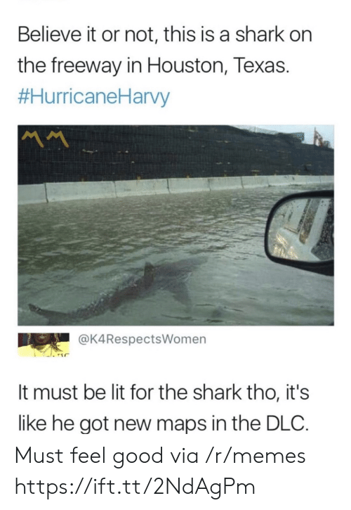 Not This: Believe it or not, this is a shark on  the freeway in Houston, Texas.  #HurricaneHarvy  MM  @K4RespectsWomen  It must be lit for the shark tho, it's  like he got new maps in the DLC Must feel good via /r/memes https://ift.tt/2NdAgPm