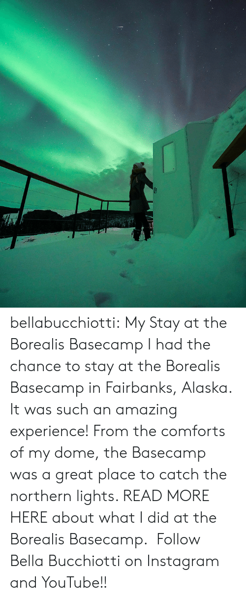 Northern: bellabucchiotti: My Stay at the Borealis Basecamp   I had the chance to stay at the Borealis Basecamp  in Fairbanks, Alaska. It was such an amazing experience! From the comforts of my dome,  the Basecamp was a great place to catch the northern lights. READ MORE HERE about what I did at the Borealis Basecamp.    Follow Bella Bucchiotti on Instagram and YouTube!!