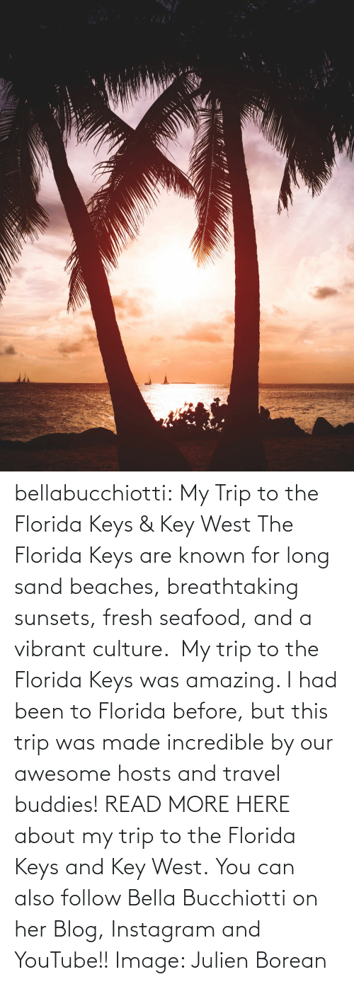 bella: bellabucchiotti: My Trip to the Florida Keys & Key West  The Florida Keys are known for long sand beaches, breathtaking sunsets,  fresh seafood, and a vibrant culture.  My trip to the Florida Keys was  amazing. I had been to Florida before, but this trip was made incredible  by our awesome hosts and travel buddies!  READ MORE HERE about my trip to the Florida Keys and Key West. You can also follow Bella Bucchiotti on her Blog, Instagram and YouTube!! Image:     Julien Borean