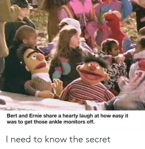 need-to-know: Bert and Ernie share a hearty laugh at how easy it  was to get those ankle monitors off. I need to know the secret