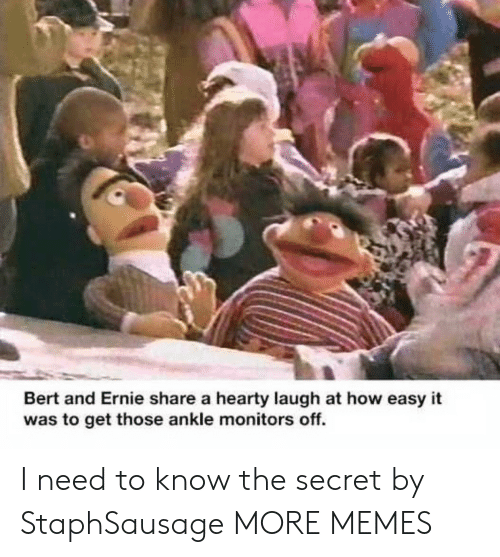 need-to-know: Bert and Ernie share a hearty laugh at how easy it  was to get those ankle monitors off. I need to know the secret by StaphSausage MORE MEMES