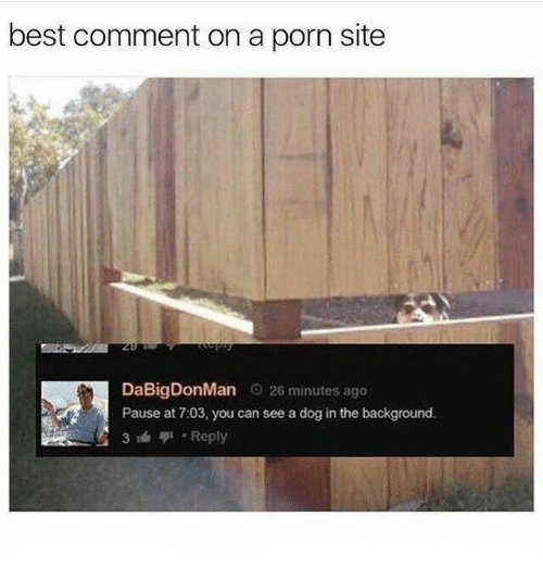 Best Comment: best comment on a porn site  DaBigDonMan 026 minutes ago  Pause at 7:03, you can see a dog in the background.  31Reply