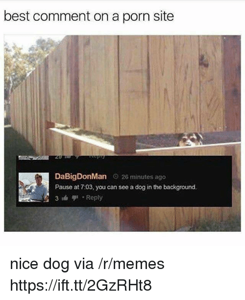 Best Comment: best comment on a porn site  DaBigDonMan o 26 minutes ago  Pause at 7:03, you can see a dog in the background.  3 Reply nice dog via /r/memes https://ift.tt/2GzRHt8