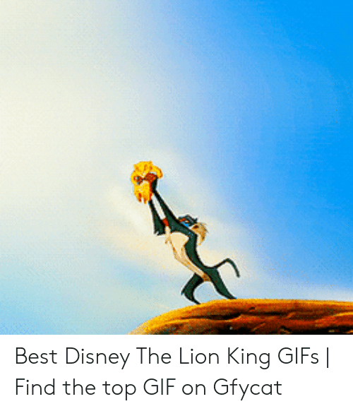 25 Best Memes About Lion King Gifs Lion King Gifs Memes