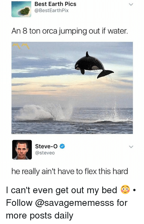 steveo: Best Earth Pics  @BestEarthPix  An 8 ton orca jumping out if water.  Steve-O  @steveo  he really ain't have to flex this hard I can't even get out my bed 😳 • Follow @savagememesss for more posts daily