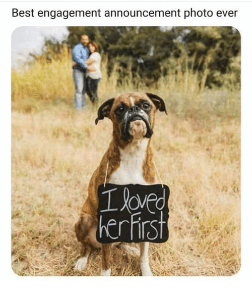 Relationships, Best, and Announcement: Best engagement announcement photo ever  Tave  herfirst