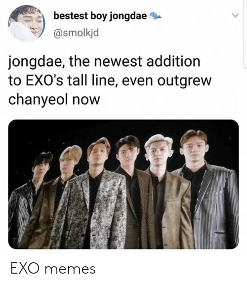 Memes, Exo, and Boy: bestest boy jongdae  @smolkjd  jongdae, the newest addition  to EXO's tall line, even outgrew  chanyeol now EXO memes