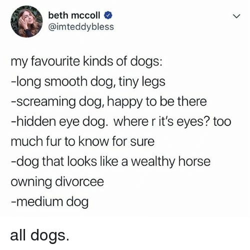 Dogs, Smooth, and Too Much: beth mccoll  @imteddybless  my favourite kinds of dogs:  -long smooth dog, tiny legs  -screaming dog, happy to be there  -hidden eye dog. where r it's eyes? too  much fur to know for sure  -dog that looks like a wealthy horse  owning divorcee  medium dog all dogs.