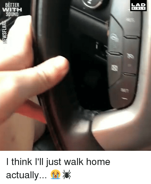 Memes, Bible, and Home: BETTER  WITH  SOUND  LAD  BIBLE I think I'll just walk home actually... 😭🕷️